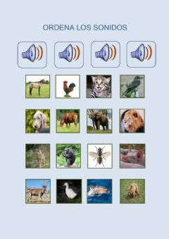 Interactive worksheet Sonidos animales