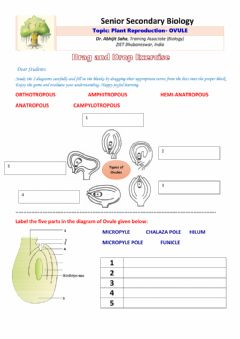 Interactive worksheet Senior Secondary Biology:Plant Reproduction- OVULE