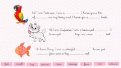 Ficha interactiva Writing animals