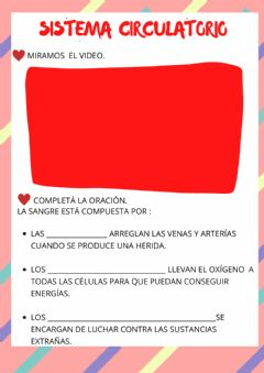 Interactive worksheet Sistema circulatorio