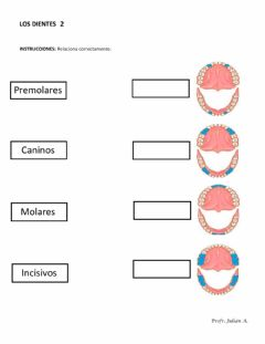 Interactive worksheet Los dientes 2