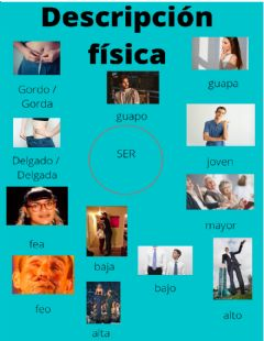 Interactive worksheet Descripcion física