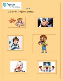 Interactive worksheet Taste