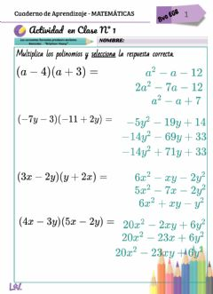 Interactive worksheet Multiplicación de polinomios
