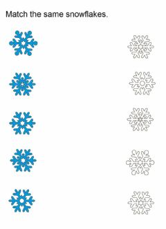 Interactive worksheet Snowflakes match