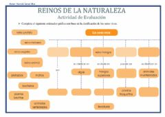 Interactive worksheet Reinos de la Naturaleza