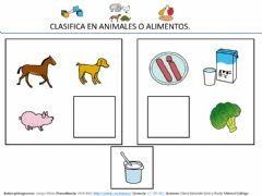Interactive worksheet Categorias