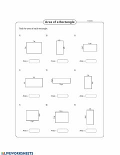 Interactive worksheet Area