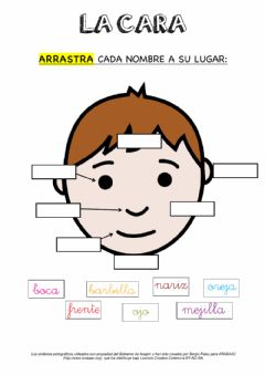 Interactive worksheet La cara