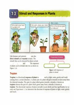 Interactive worksheet Stimuli and responses in plants