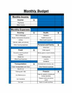 Ficha interactiva Monthly Budget Sheet with Guide