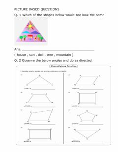 Interactive worksheet Does it look the same