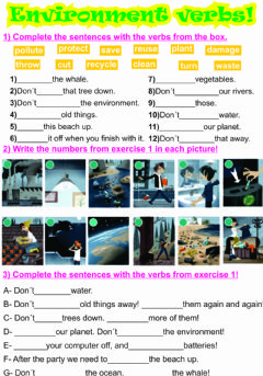 Interactive worksheet Environment verbs