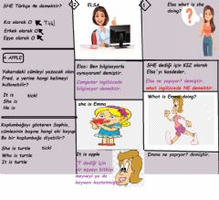Interactive worksheet She is-He is
