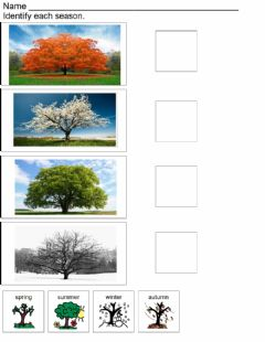 Interactive worksheet Identify the season