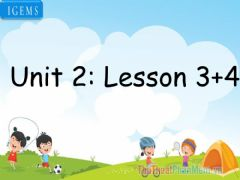 Interactive worksheet Unit 2-lesson 3,4
