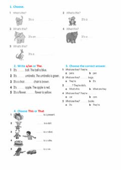 Interactive worksheet Articles a-an, the
