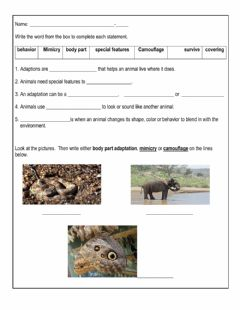 Interactive worksheet Animal Adaptation