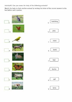 Interactive worksheet Mother and baby animals