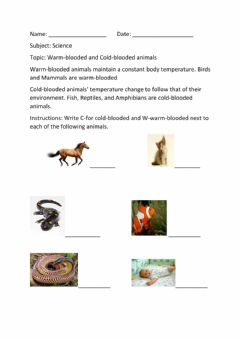 Interactive worksheet Warm and Cold Blooded Animals