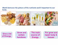 Interactive worksheet Nutrients your body need