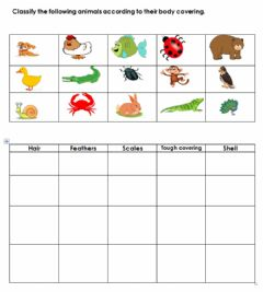 Interactive worksheet Body Covering of Animals