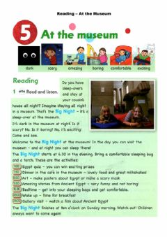 Ficha interactiva Reading - At the museum