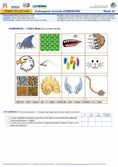 Interactive worksheet Week35: Endangered Animals - HOMEWORK MMN- Nivel Pre A1
