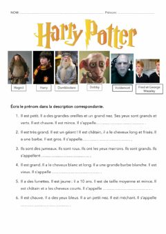 Interactive worksheet Description Harry Potter