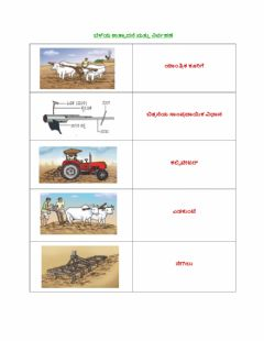 Interactive worksheet Crop management