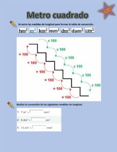 Interactive worksheet Metro cuadrado