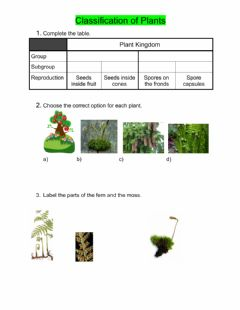 Interactive worksheet Classification of Plants