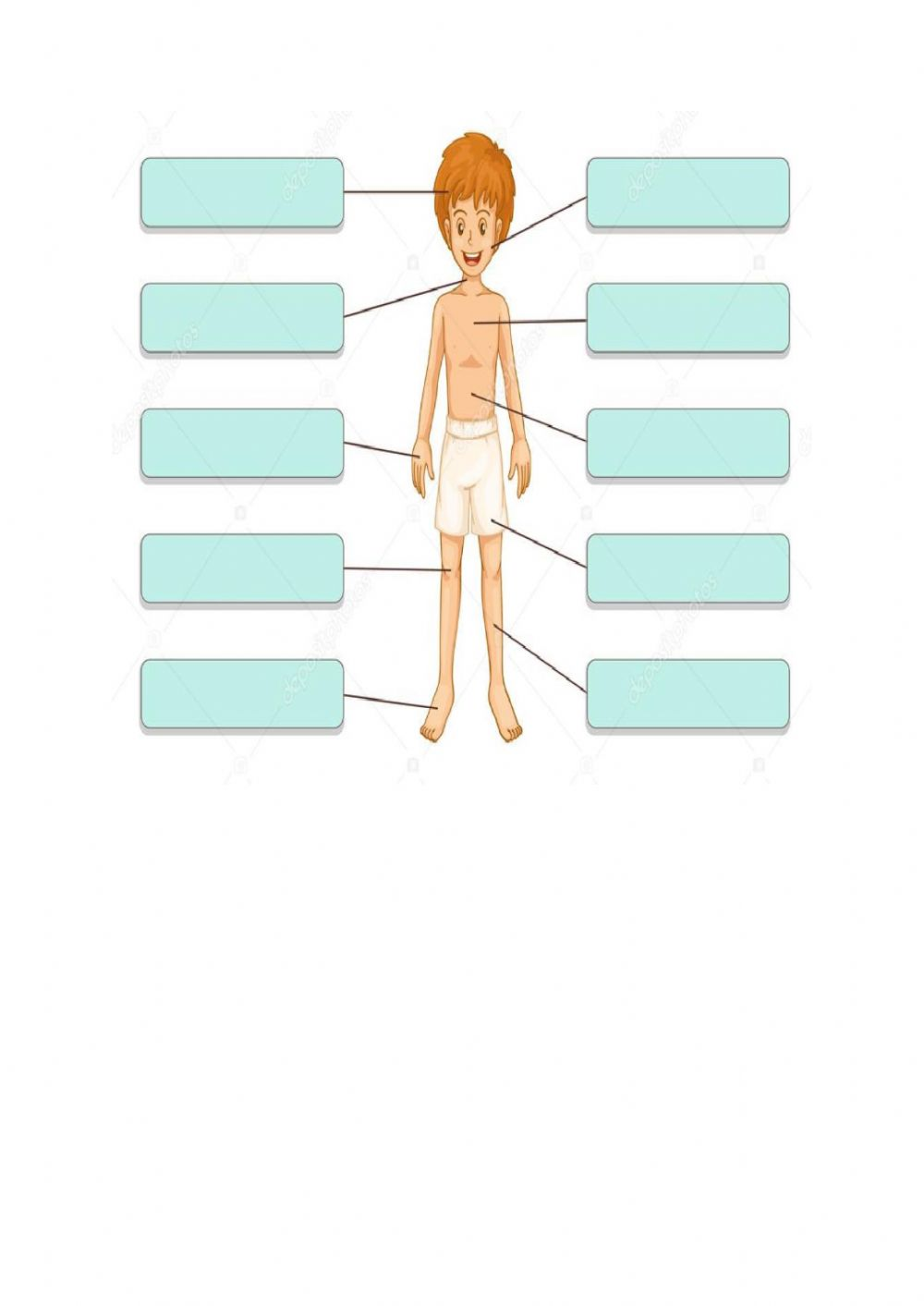 Human Body interactive activity for 8