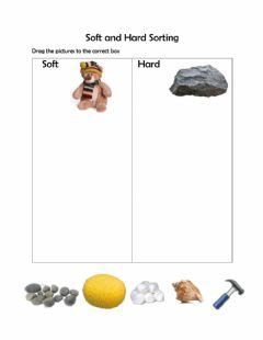 Interactive worksheet Sorting soft and hard