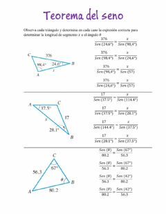 Interactive worksheet Teorema del Seno