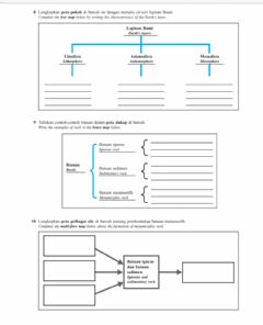 Interactive worksheet Earth 3