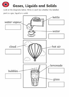 Interactive worksheet Year 2 Solid,liquid and gas