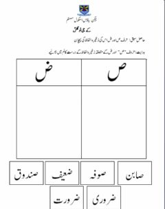 Interactive worksheet ص اور ض