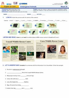 Interactive worksheet Week 35: Endangered animals MMN- Nivel A1