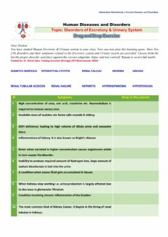 Interactive worksheet Disorders of Excretory System