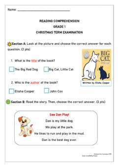 Interactive worksheet Comprehension - Review