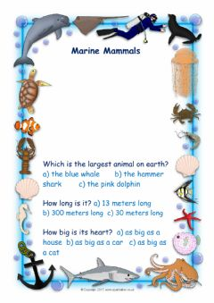 Interactive worksheet Marine mammals