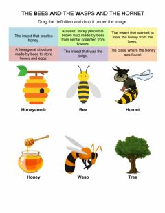 Ficha interactiva The Bees and The Wasps and The Hornet