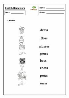 Interactive worksheet Lesson 21 - ss sound