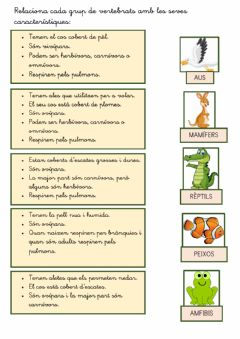 Interactive worksheet Característiques regne animal