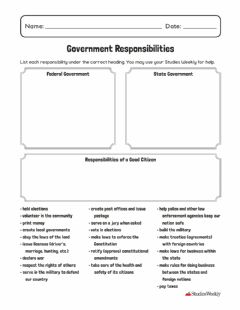 Interactive worksheet Government Responsibilities
