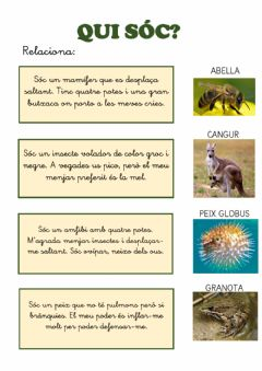 Interactive worksheet Qui sóc? Endevinalles d'animals