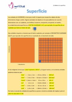 Interactive worksheet CAS-6013-Superficie-conceptos
