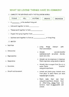 Interactive worksheet What do living things have in common?