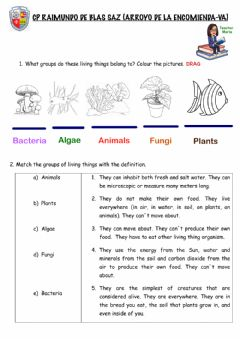 Interactive worksheet Unit 4 Classifying Living Things
